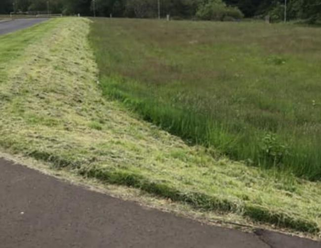 Relaxed grass cutting response 'brilliant'