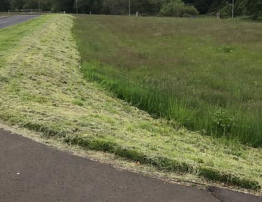 North Ayrshire 'relaxed' grass cutting response 'brilliant'