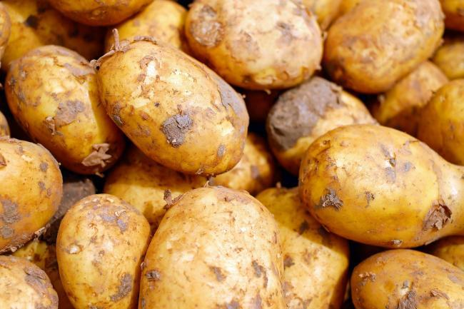 Ayrshire new potatoes finally granted EU protection