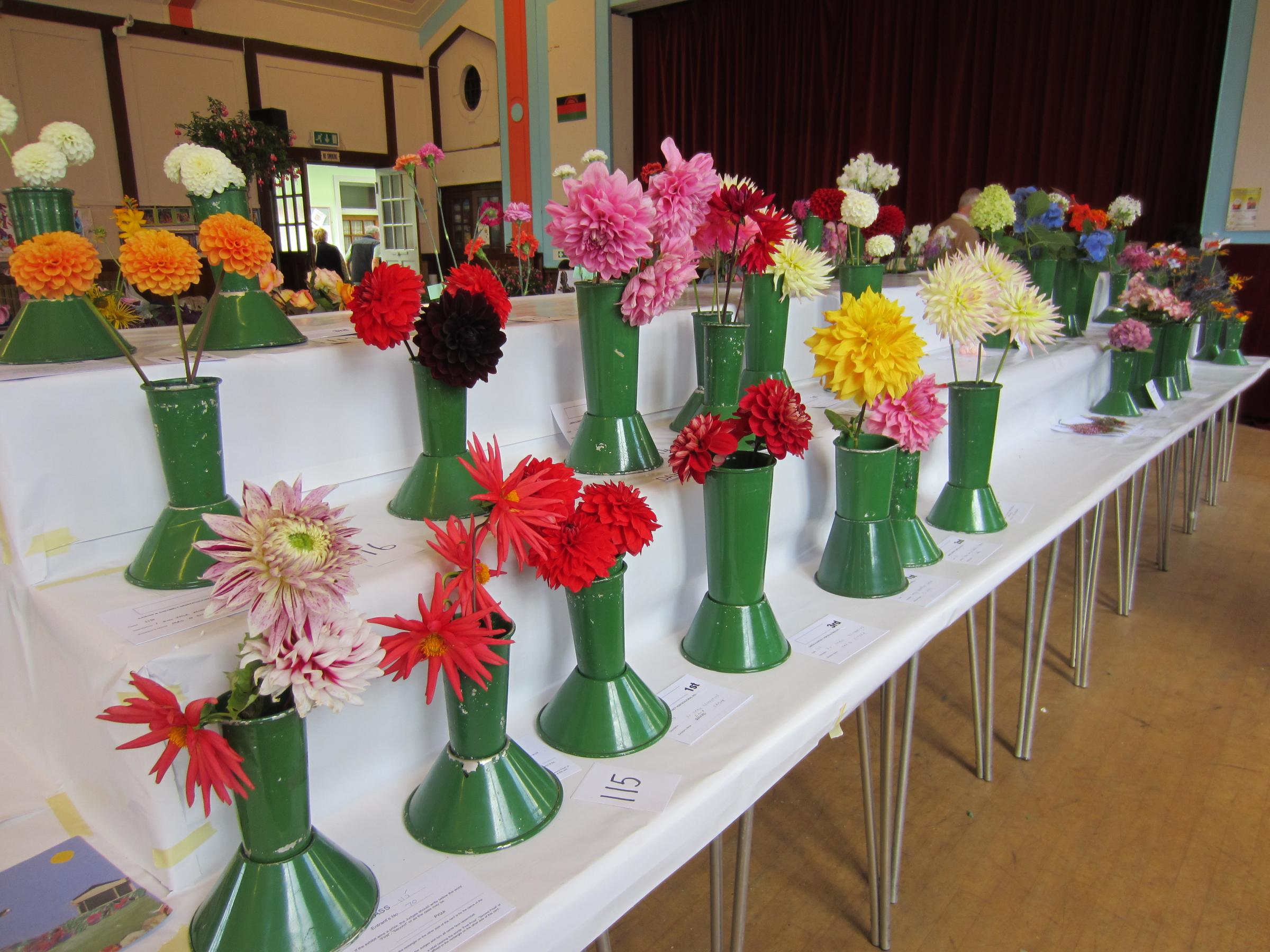 Largs Flower Show