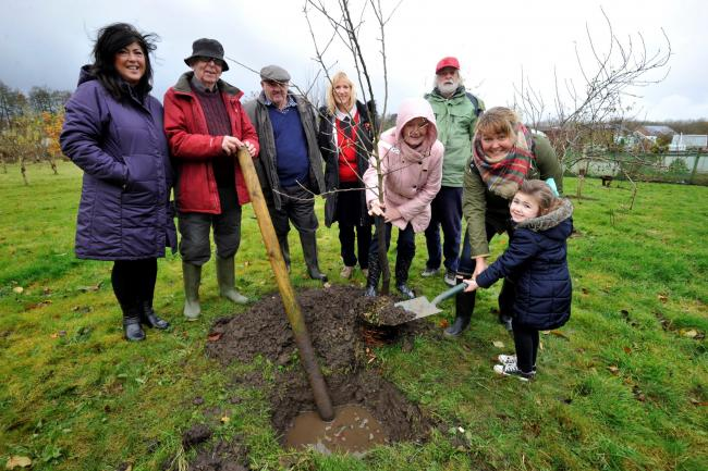 Ruth Maguire MSP presents apple tree to Eglinton growers.