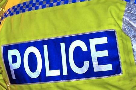 Female dog walker attacked by thug in attempted robbery