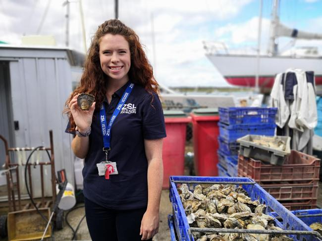 Celine Gamble, Wild Oysters Project Manager.