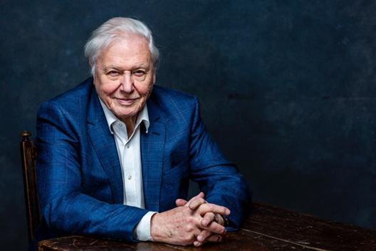 David Attenborough awarded Lifetime Achievement Award. Picture: Taylor Herring.