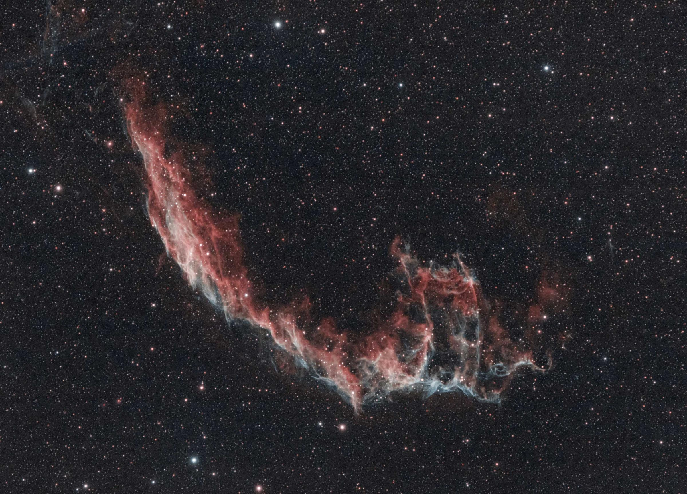 The Veil Nebula, a huge, feathery cloud of heated gas and dust in the constellation Cygnus - pictured by 16-year-old Scottish astro-photographer Helena Cochrane