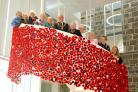 Dreghorn knitters' poppy cascade on tour after Townhouse display